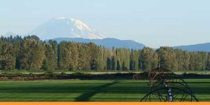 Seattle Real Estate News | Snohomish River Valley & Mount Rainier